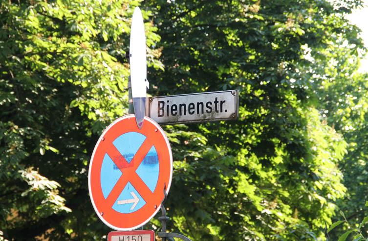 Straßenschild Bienenstraße Heidelberg im Sommer